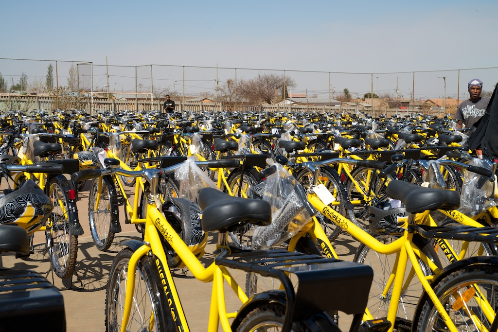On arrival the first sight that greeted us was  250 bicycles.