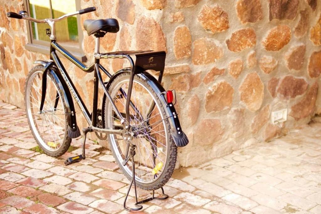 gary player bike